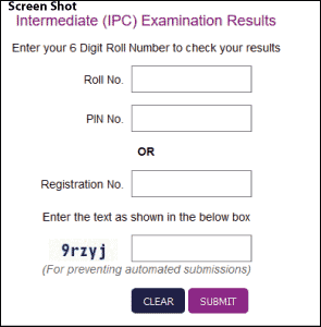 CA IPCC Result Screen Shot